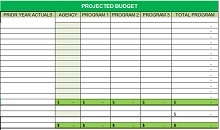 nonprofit project budget template