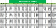 excel spreadsheet for weight loss competition
