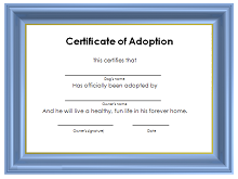 graphic relating to Printable Fake Adoption Papers identify 40+ Adoption Certification Template (PDF, Term) 2019 » ExcelSHE