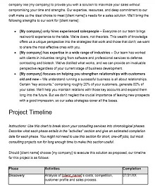 Consulting proposal template 13